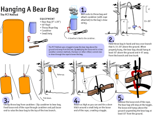 hanging-a-bear-bag